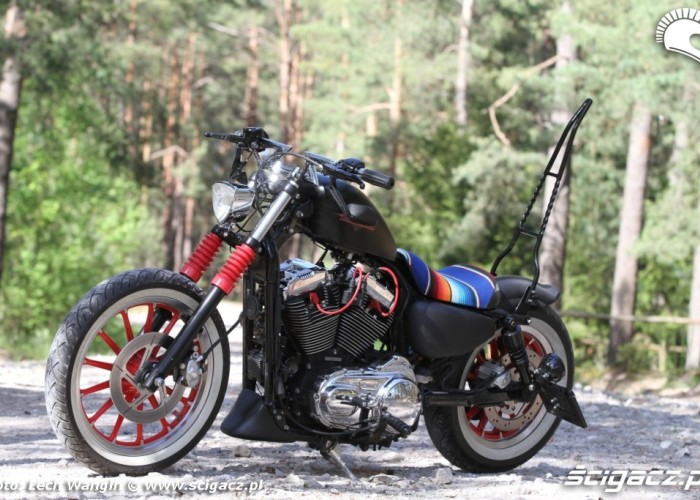 16 Custom Hell Ride Harley Davidson Sportster