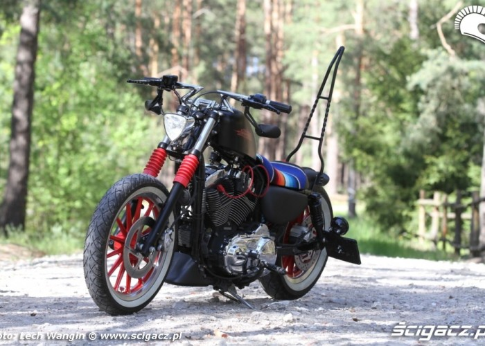 17 Custom Hell Ride Harley Davidson Sportster