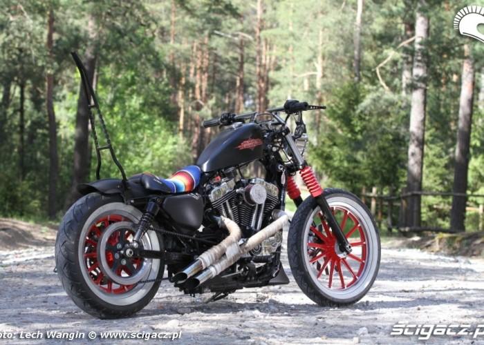 18 Custom Hell Ride Harley Davidson Sportster
