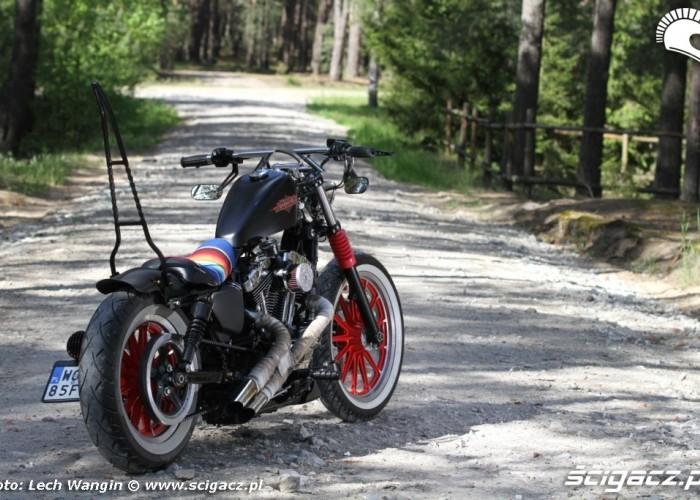 19 Custom Hell Ride Harley Davidson Sportster
