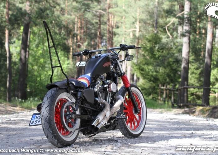 20 Custom Hell Ride Harley Davidson Sportster