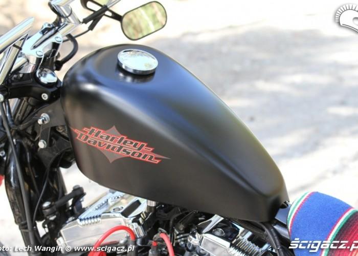 24 Custom Hell Ride Harley Davidson Sportster z bliska