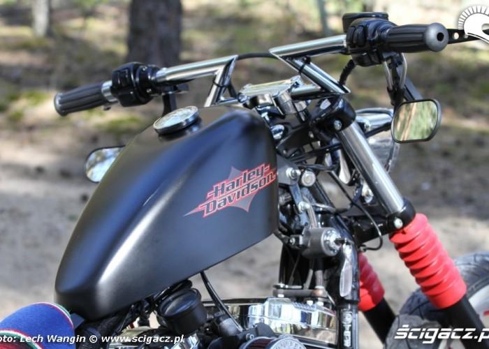 26 Custom Hell Ride Harley Davidson Sportster bak