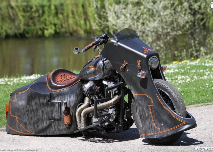 19 Harley Davidson Sportster 1200 Led Sled natura