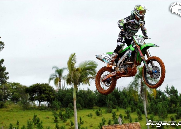 MS MX Brazylia