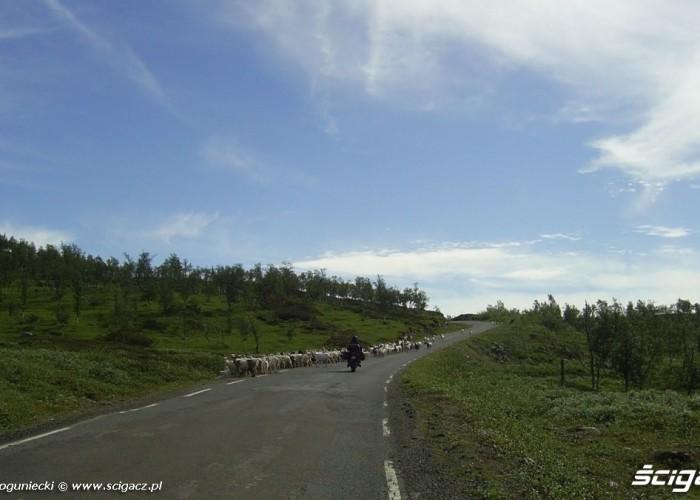 dookola skandynawii motocyklami (9)
