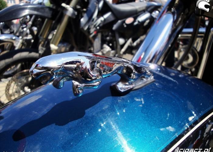 Jaguar na blotniku