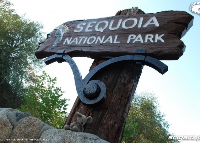 Sekwoja Park