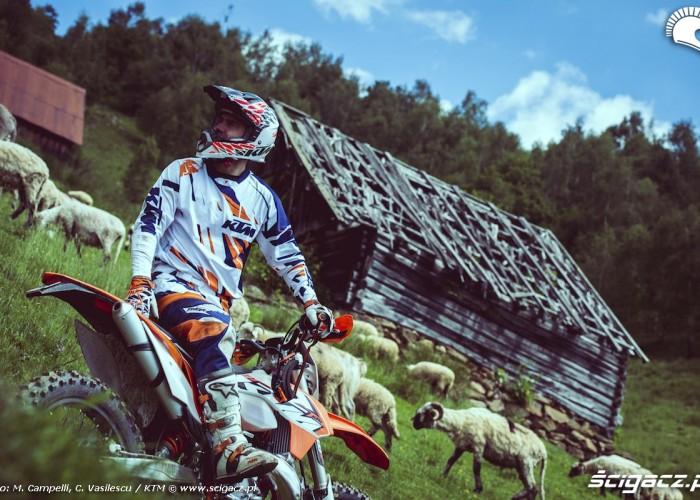 ktm enduro w rumunii owce