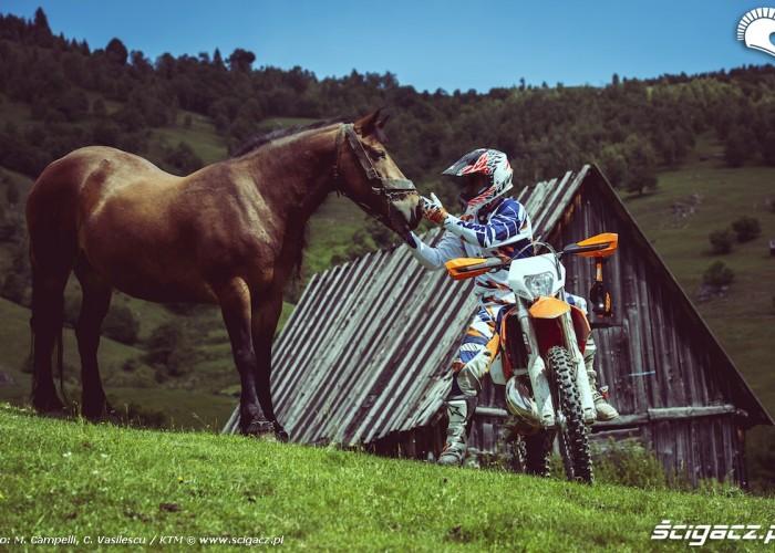 ktm enduro w rumunii z koniem