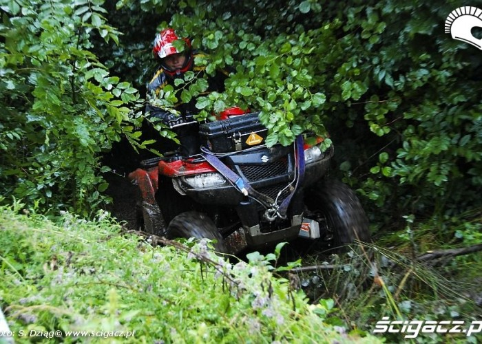 Suzuki King Quad przejaz przez krzaki