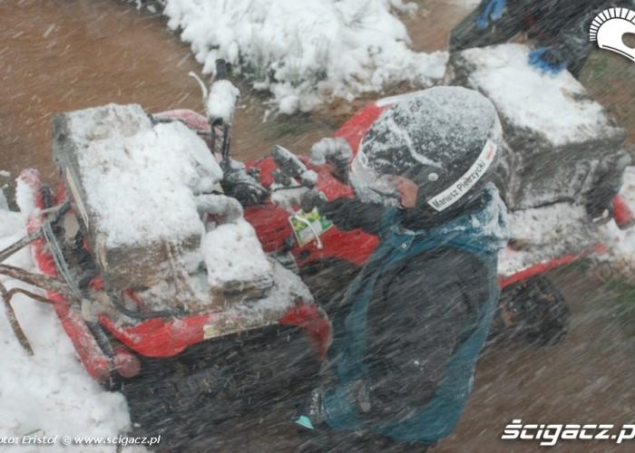 40 zamiec sniezna