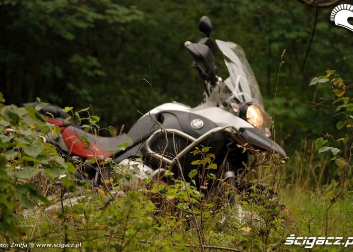 BMW GS w lesie