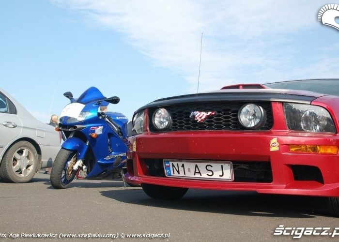 GECKO CUP MODLIN 2008 Ford Mustang
