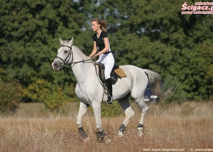 konie i motocykle cz1 01k