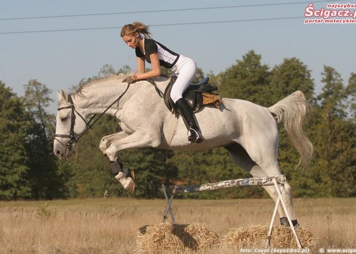 konie i motocykle cz1 02k