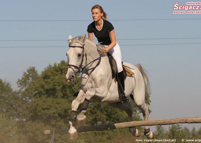 konie i motocykle cz1 03k