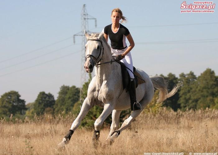 konie i motocykle cz1 09k
