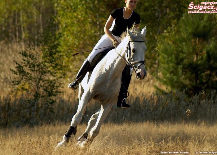 konie i motocykle cz1 10k