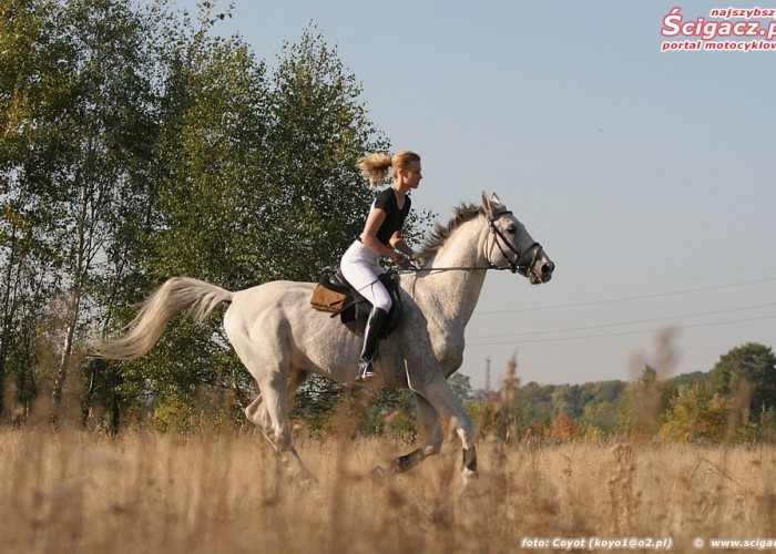 konie i motocykle cz1 11k