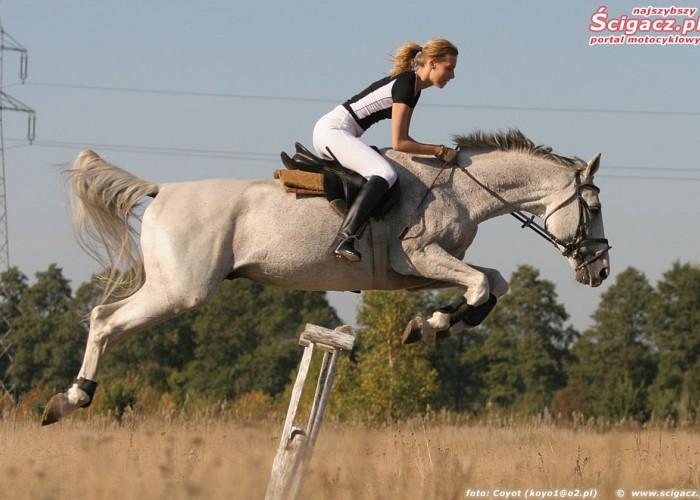 konie i motocykle cz1 12k