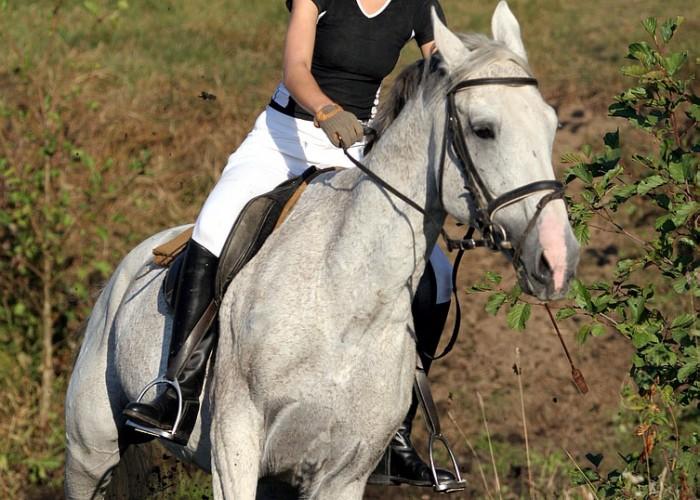 konie i motocykle cz1 15k