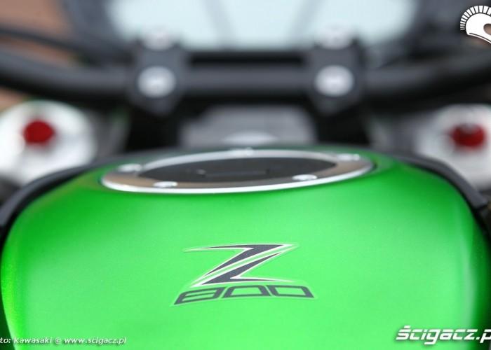 Kawasaki Z800 2013 bak