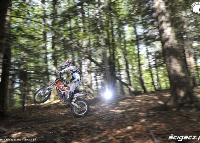 2014 ktm freeride 250 r w lesie