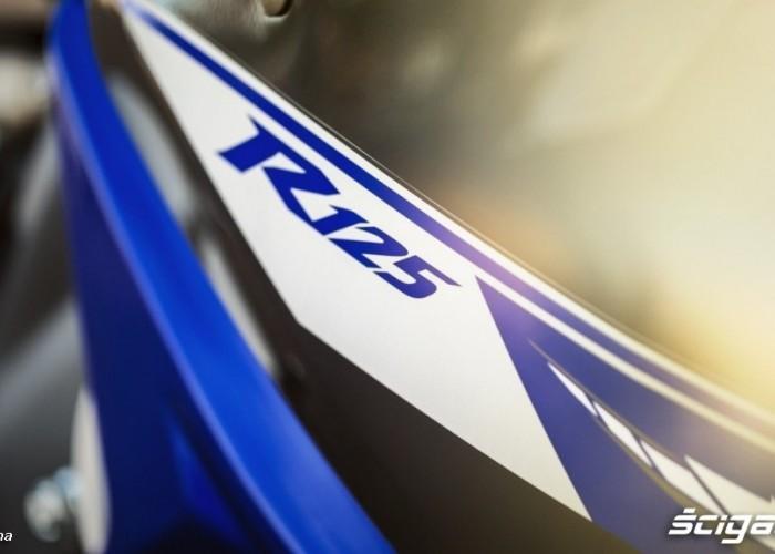 2014 Yamaha YZF R125 oznaczenie