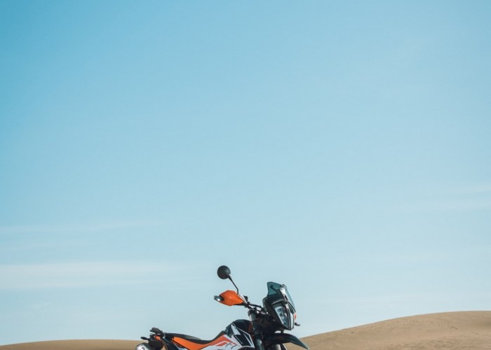 pustynni lis 790 adventure