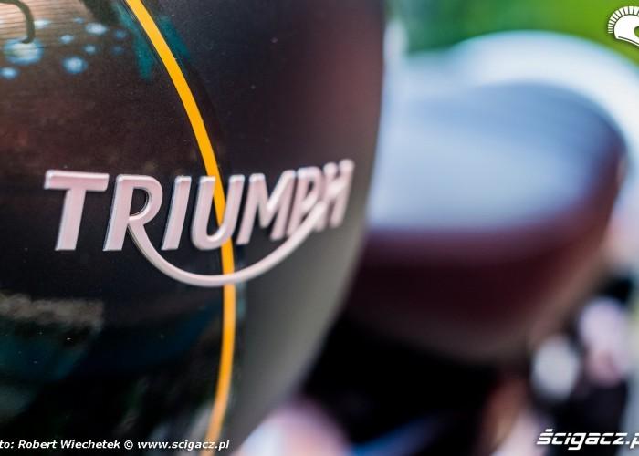 Triumph Scrambler 1200 XC bak