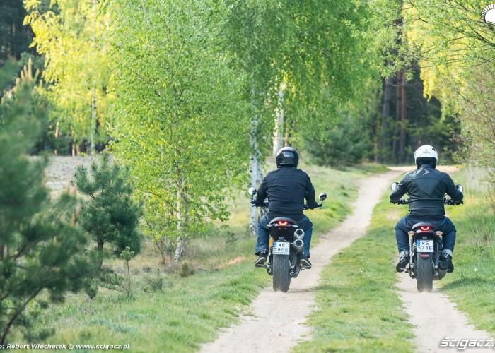 19 Ducati Scrambler 800 Ducati Scrambler 1100 polna droga tyl