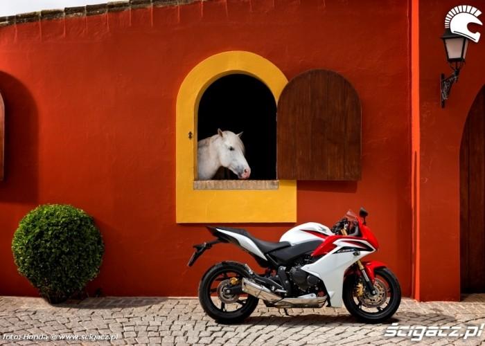Honda CBR600F na tle