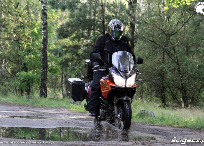 w mokrym lesie Suzuki DL650 test
