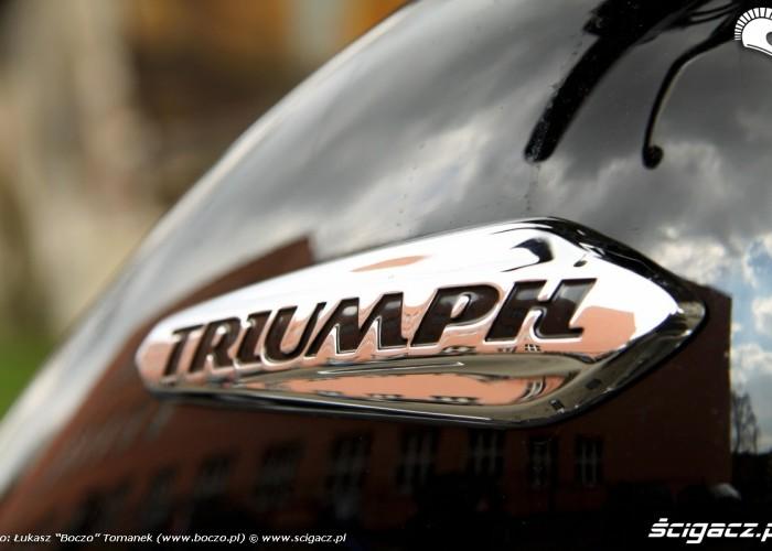 logo Triumph Thunderbird Storm