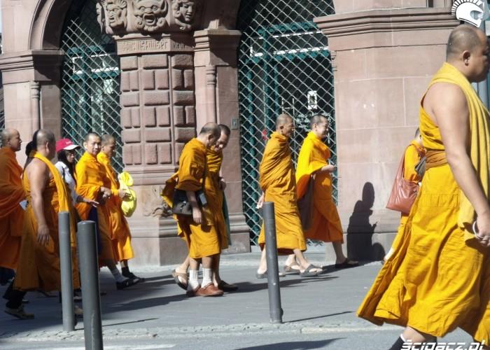 mnisi w miescie