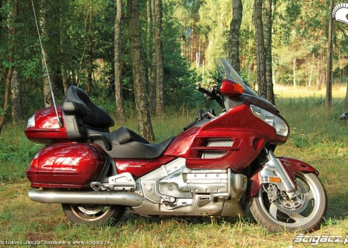 Honda Goldwing w trasie las