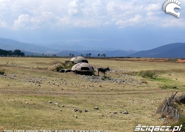 Albania - osiol