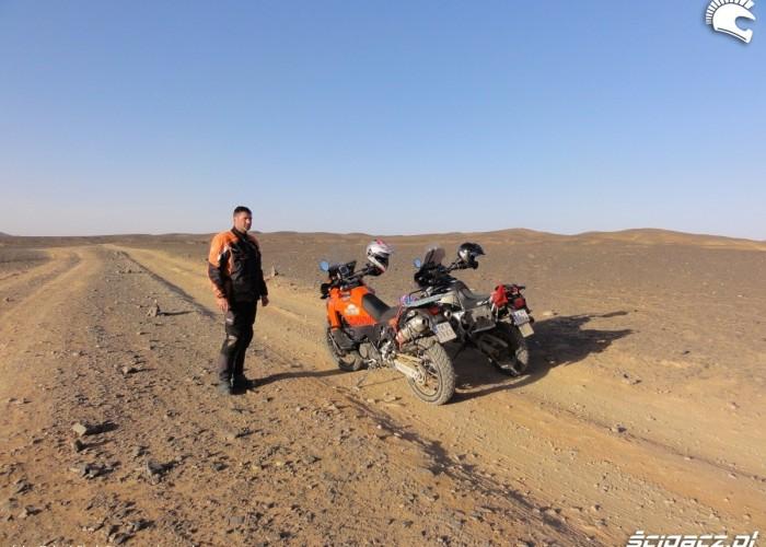 gola pustynia