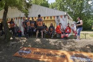 harley davidson flat track event