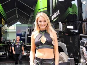 MotoGP Brno 2018 paddock girls 21