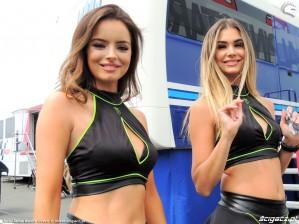 MotoGP Brno 2018 paddock girls 25