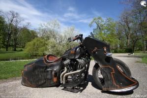 16 Harley Davidson Sportster 1200 Led Sled custom park