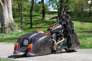 20 Harley Davidson Sportster 1200 custom