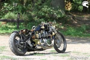 16 Triumph Bonneville America custom przyroda