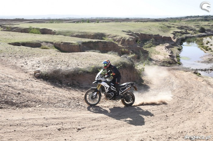 003 rally pro triumph tiger 900
