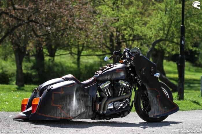 18 Harley Davidson Sportster 1200 Led Sled custom przyroda