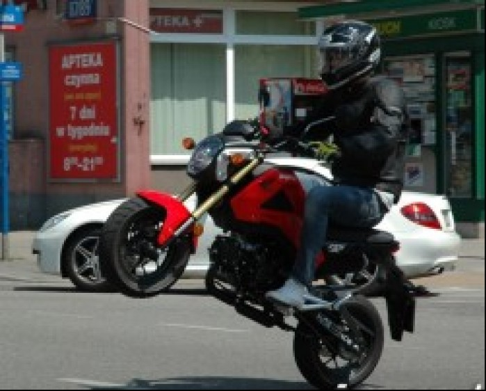 Wheelie Honda MSX 125 2014