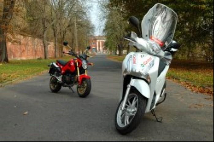 sh 125 vs msx skuter motocykl