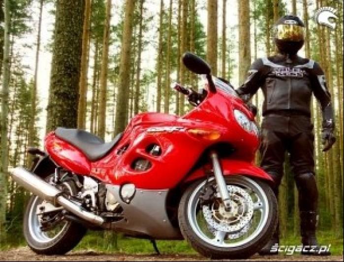 GSX600F jajko w lesie